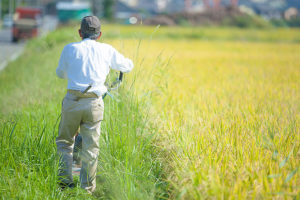 農業の人手不足の現状